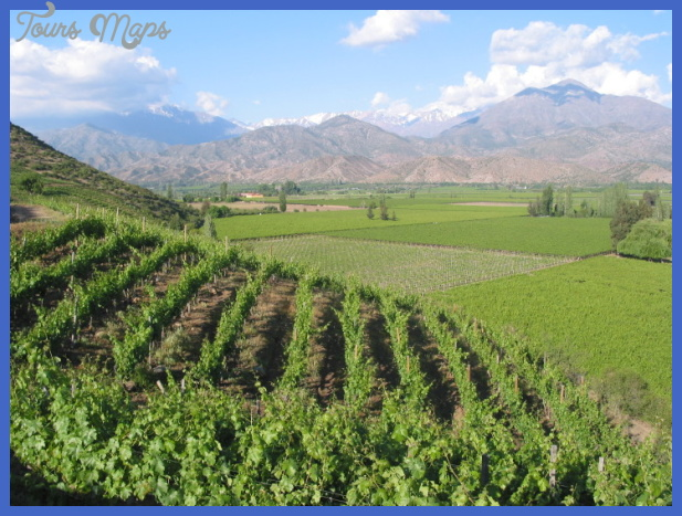 best vineyards in south america 728x546 Best country to visit in south america