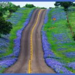 bluebonnet highway 150x150 Best countries to visit in april