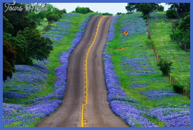 bluebonnet highway Best countries to visit in april