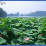 hangzhou travel  1 150x150 Hangzhou Travel