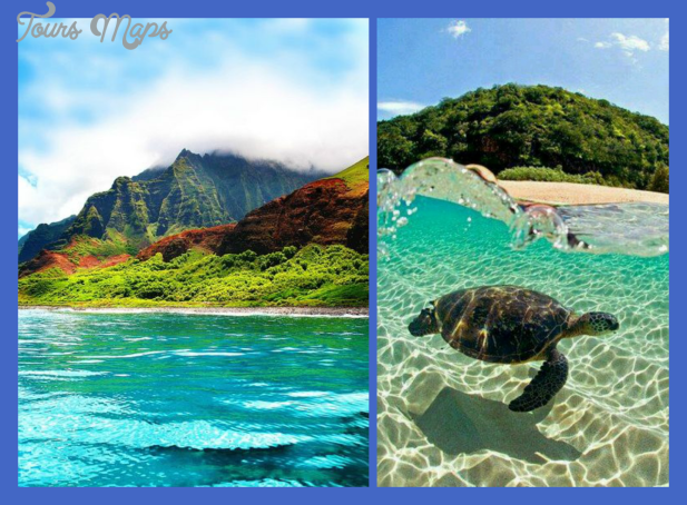 hawaiicollage2 Places in Hawaii to visit