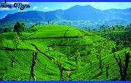 luxury-holiday-srilanka.jpg