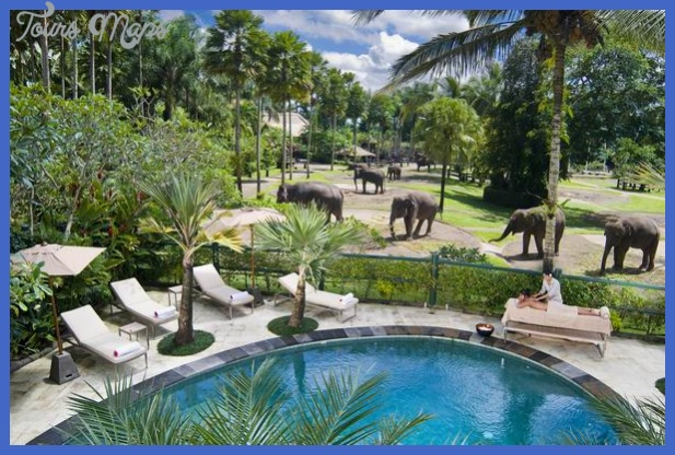 Nairobi-Best-Hotel-Wedding-Venue-Safari-Park-Hotel.jpg
