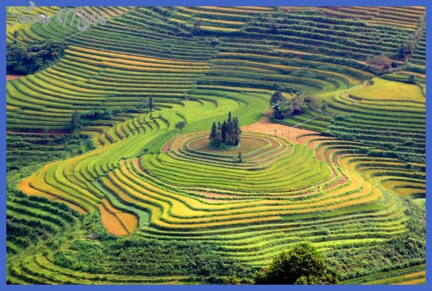 sapa terraced fields Best country to visit in October