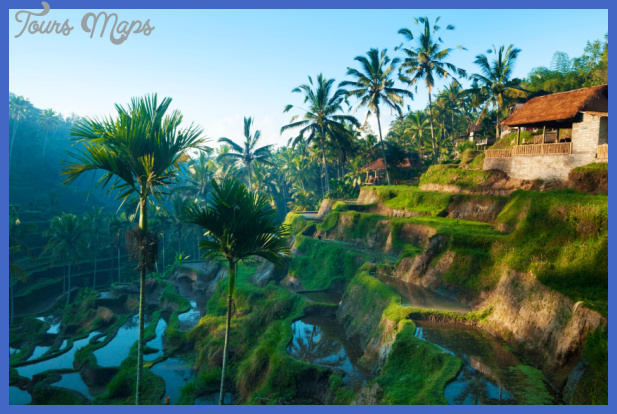 terrace rice fields in ubud bali indonesia Best countries to visit in april