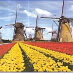 2012 05 01 netherlands a 150x150 THE NETHERLANDS