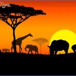 africa 150x150 AFRICA
