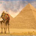 Camel-Desktop-Photos.jpg
