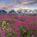 canada travel landscape 706 30 150x150 Travel to Canada