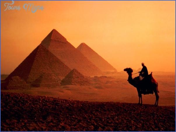 egypt camel EGYPT