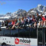 mooseonbus12x8 1024x682 150x150 Travel to Canada