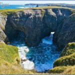 newfoundland 17 150x150 Newfoundland