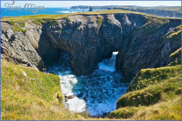 newfoundland 17 Newfoundland