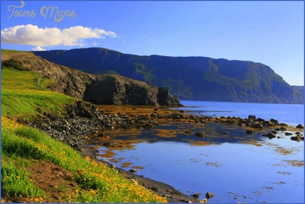 newfoundland 55 Newfoundland
