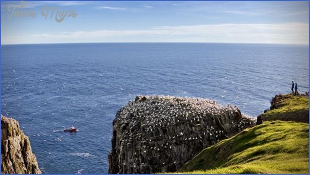 Newfoundland_61.jpg