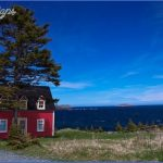 newfoundland 65 150x150 Newfoundland