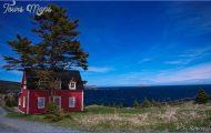 Newfoundland_65.jpg