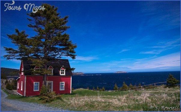 newfoundland 65 Newfoundland
