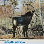r o s a the sable antelope travelposter 150x150 THE REPUBLIC OF SOUTH AFRICA