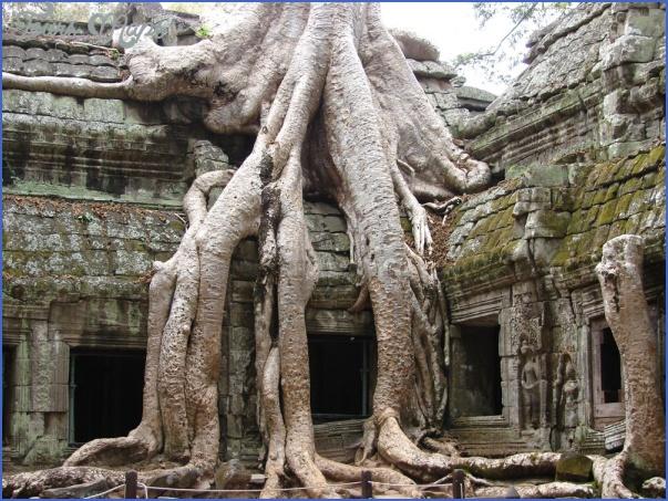 temple angkor cambodia  3 TEMPLE  ANGKOR CAMBODIA