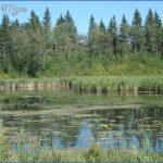 elk island national park 3 150x150 ELK ISLAND NATIONAL PARK