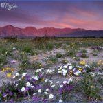 anza borrego desert state park map california 11 150x150 ANZA BORREGO DESERT STATE PARK MAP CALIFORNIA