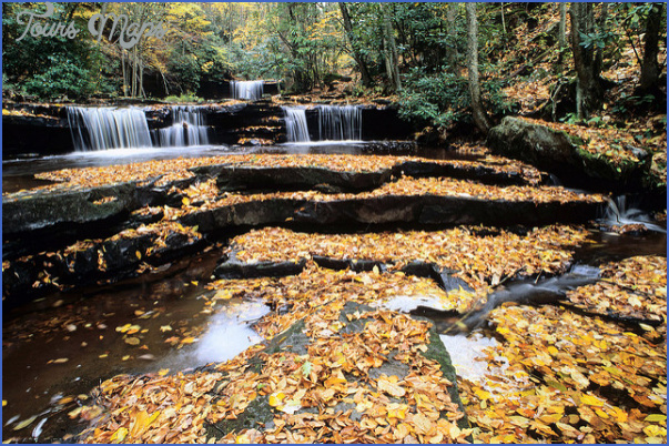 CLINCH MOUNTAIN WILDLIFE MANAGEMENT AREA MAP VIRGINIA_18.jpg