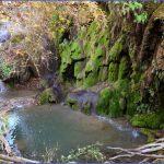 colorado bend state park map texas 15 150x150 COLORADO BEND STATE PARK MAP TEXAS
