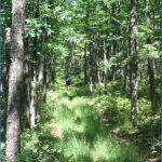 donut hole trail map pennsylvania 1 150x150 DONUT HOLE TRAIL MAP PENNSYLVANIA