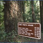 forest of nisene marks state park map california 5 150x150 FOREST OF NISENE MARKS STATE PARK MAP CALIFORNIA