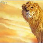 leon  19 150x150 LEON