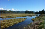 Oregon Travel_15.jpg