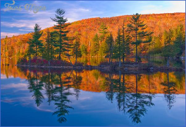 state forests in vermont 4 STATE FORESTS IN VERMONT