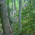 tuscarora trail map pennsylvania 4 150x150 TUSCARORA TRAIL MAP PENNSYLVANIA