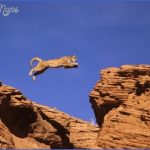 utah guide for tourist  15 150x150 Utah Guide for Tourist