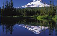 Visit to Oregon_0.jpg