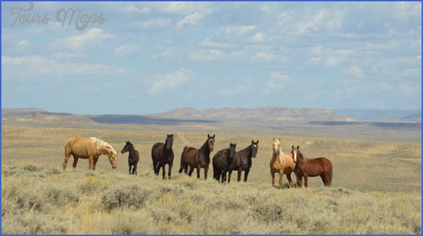 wyoming vacations  9 Wyoming Vacations