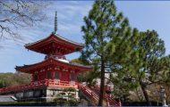 Japan travel guide Chinese_30.jpg
