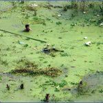 Lakes and rivers of China_8.jpg