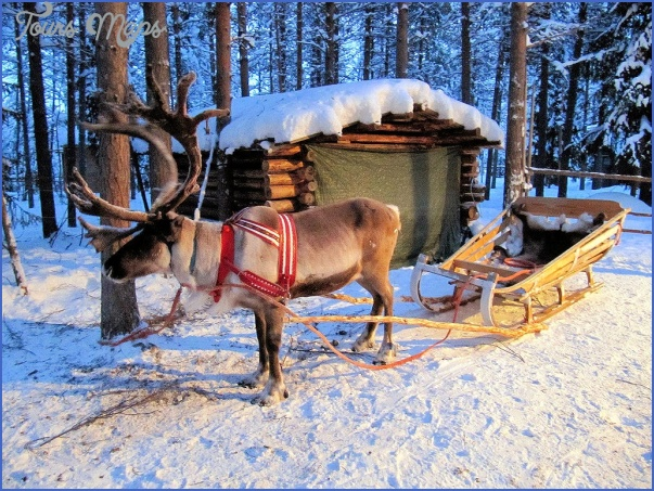lapps with reindeer northern finland 4 Lapps with reindeer Northern Finland