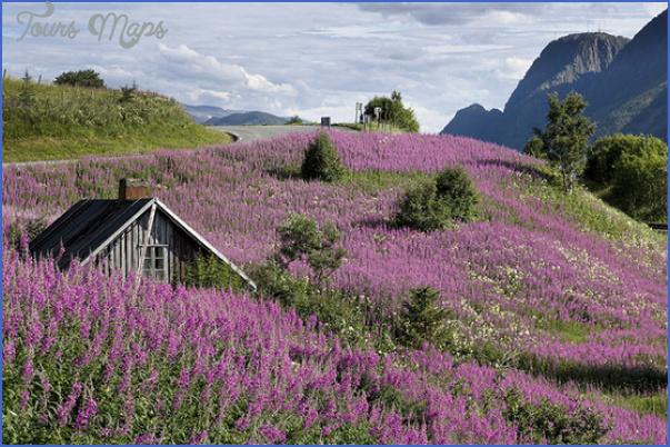 luxury travel to scandinavia 25 Luxury travel to Scandinavia
