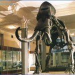 museum of inner mongolia 1 150x150 Museum of Inner Mongolia