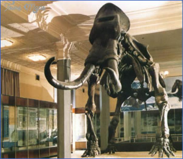 museum of inner mongolia 1 Museum of Inner Mongolia