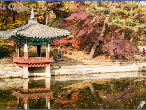 tourism seoul vacations