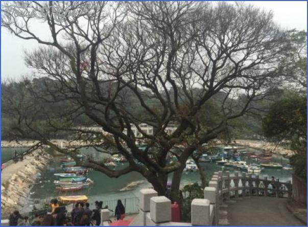 the islands of lantau chek lap kok cheung chau and peng chau 10 The islands of Lantau, Chek Lap Kok, Cheung Chau and Peng Chau