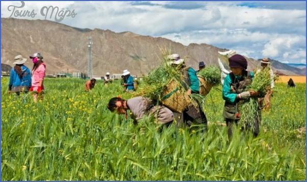 tibet 6 Tibet