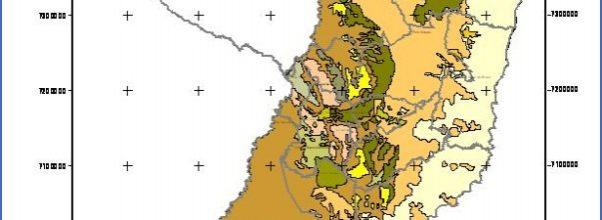Coronel Oviedo Map Paraguay _9.jpg
