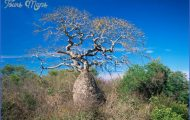 Holiday in Gran Chaco_40.jpg