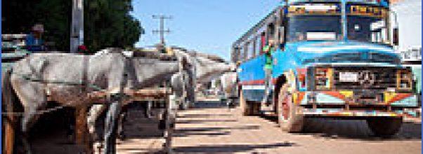 International Buses for Paraguay_35.jpg