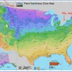 lamberts rainbow fruit us map phone address 36 150x150 Lambert's Rainbow Fruit US Map & Phone & Address